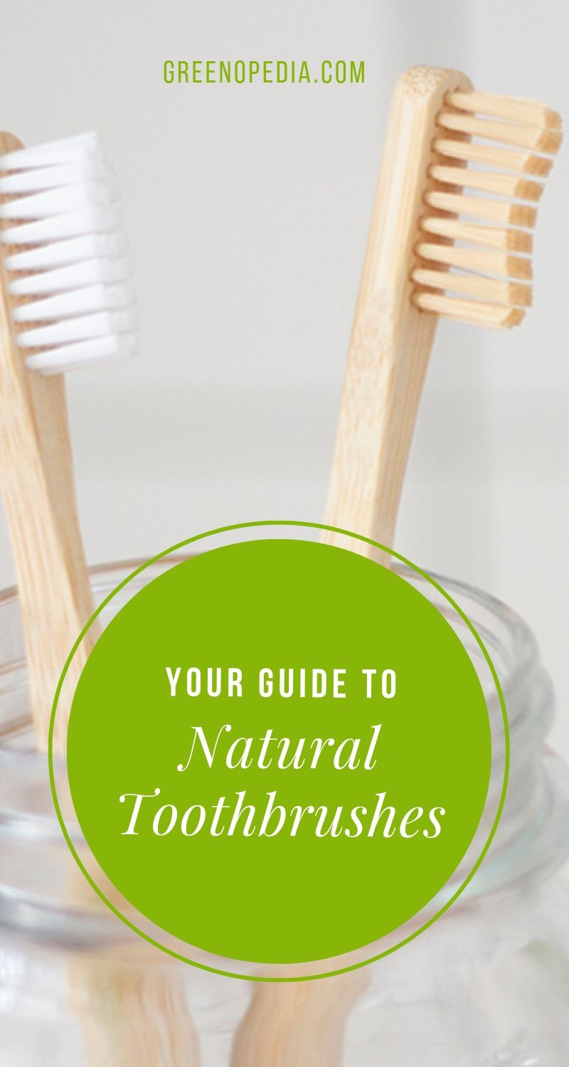 Natural Alternatives to Plastic Toothbrushes - And Why You Should Make the Switch | Greenopedia