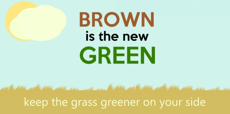 keep-your-lawn-green-during-the-drought