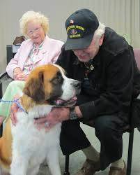 Alzheimers's Therapy Dog