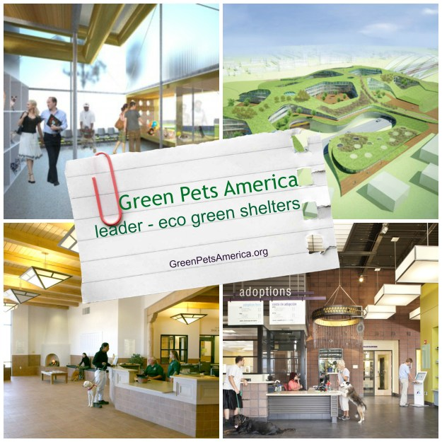 Green Pets America eco green animal shelter