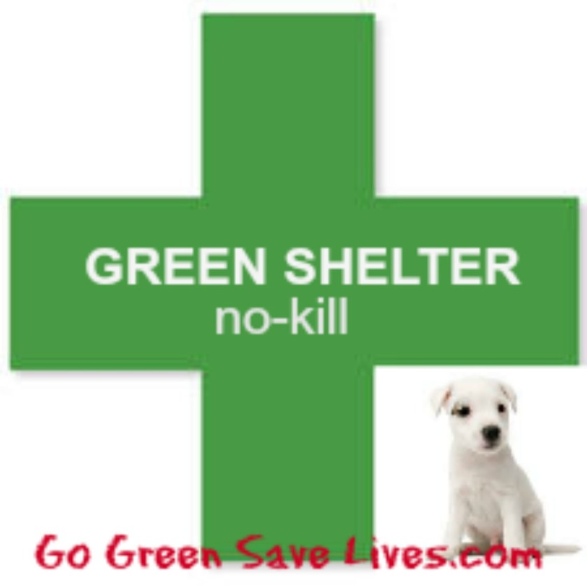 green Shelter No Kill