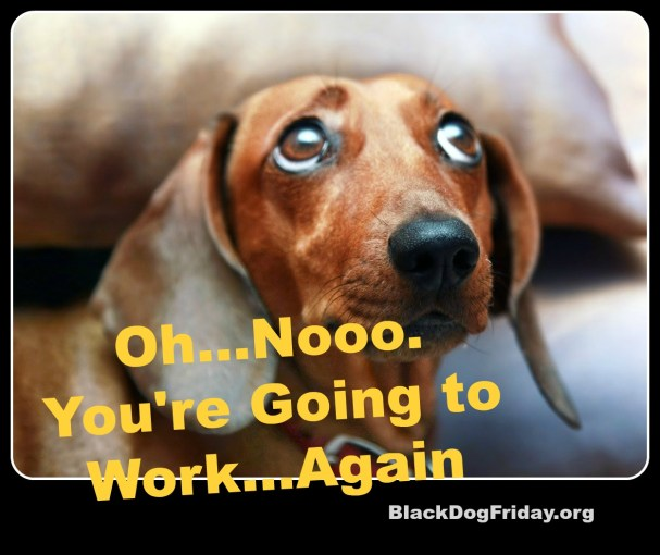 Today's Dog Humor from Black Dog Friday