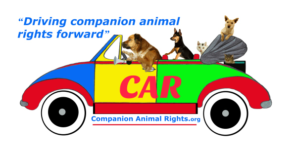Should companion animals in America have a legal right to life?