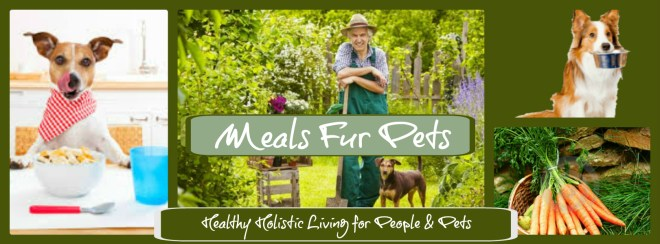 Holistic Pet Food Review Rachel Ray Nutrish