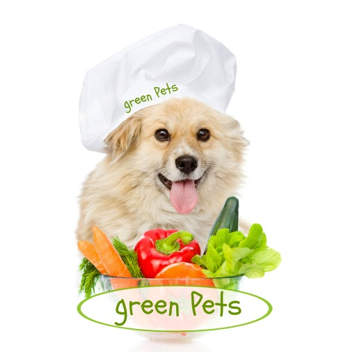 Purchase Holistic Green Pets Dog Food