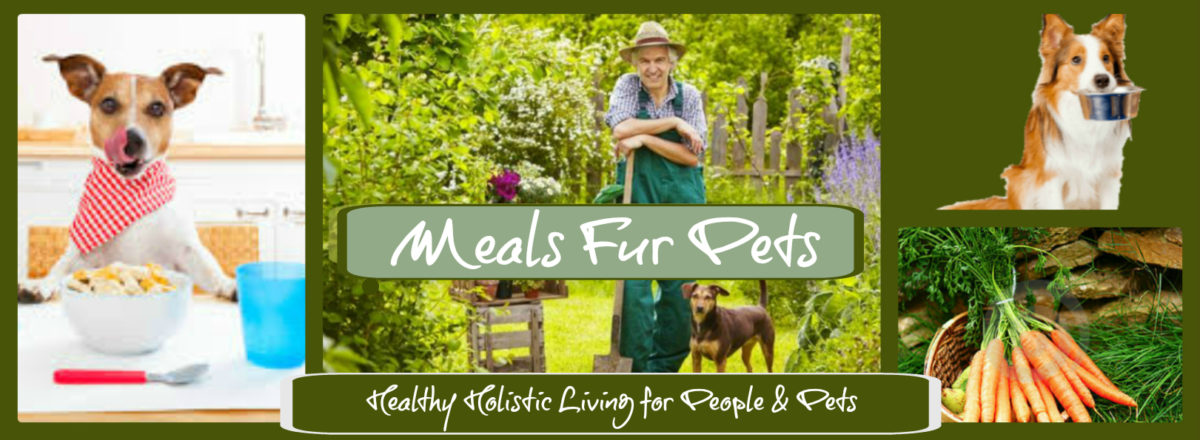 the meals fur pets story