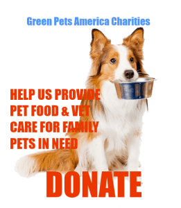 Green Pets not your basic rescue the dogs nonprofit