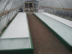 DWC troughs with rafts in place
