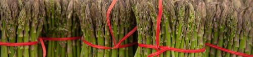 csa-asparagus_500