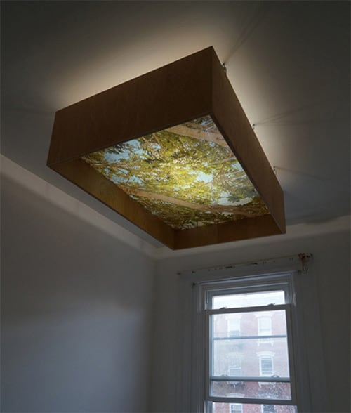 Overhead (Foliage) by Ryan Frank at The Hollows