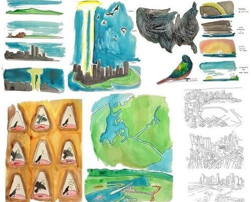 Annie Novak's avian illustrations