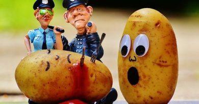 Sekrety ziemniaków – co kryje się tuż pod skórką?
