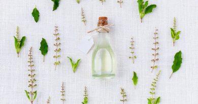Dlaczego zioła leczą?
