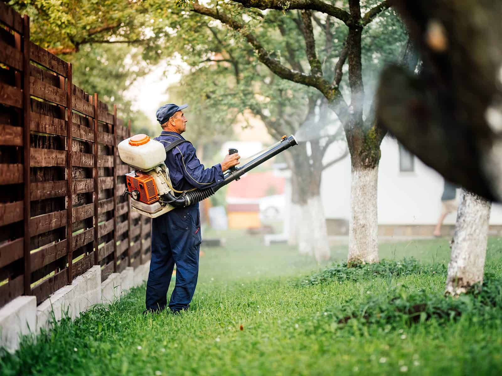 GreenPro Outdoor Pest Control - Spraying Lawn and Trees