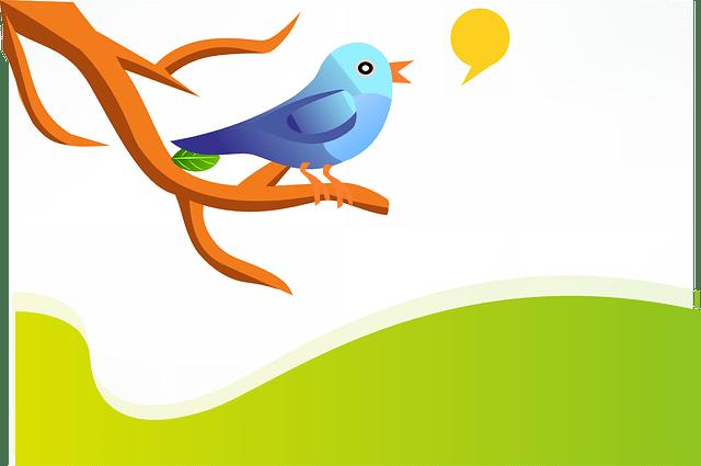 Tweet Bird Speech Bubble