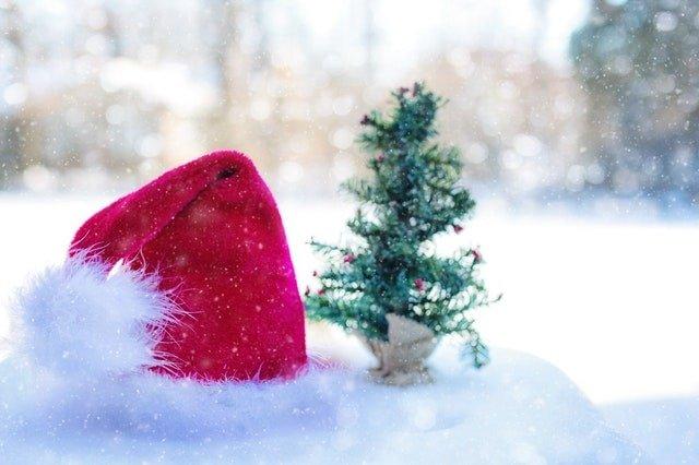 Santa Hat and Christmas Tree Miniature