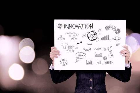 Person Holding Innovation Charts