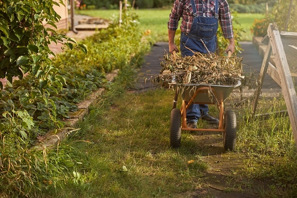 Tips For Composting Leaves
