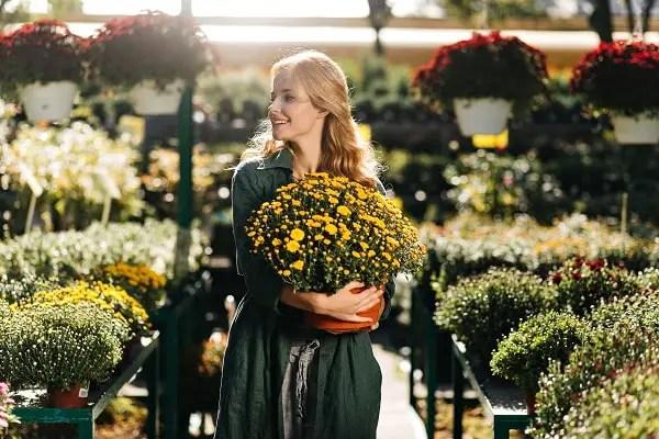 Beautiful Fall-Blooming Plants