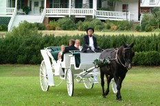 Carriage Ride in Grand Style