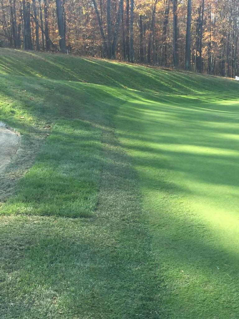 Sod repairs in stepcut #5 green