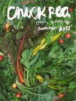 ChickpeaMagazineSummer2013