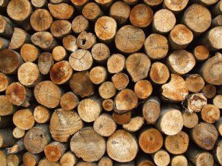 firewood-06