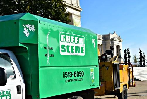 green-scene-tree-service-6