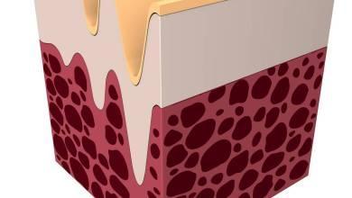 تجربتي مع الكولاجين السائل افضل انواع الكولاجين السائل كولاجين اي هيرب افضل انواع حبوب الكولاجين لنفخ الخدود سوبر كولاجين فوائد الكولاجين السائل للبشرة الكولاجين البحري افضل حبوب كولاجين من الصيدليه الكولاجين السائل من اي هيرب تجربتي مع الكولاجين السائل ايهما افضل حبوب الكولاجين او شراب الكولاجين افضل كريم كولاجين من الصيدليه الفرق بين الكولاجين البحري والحيواني