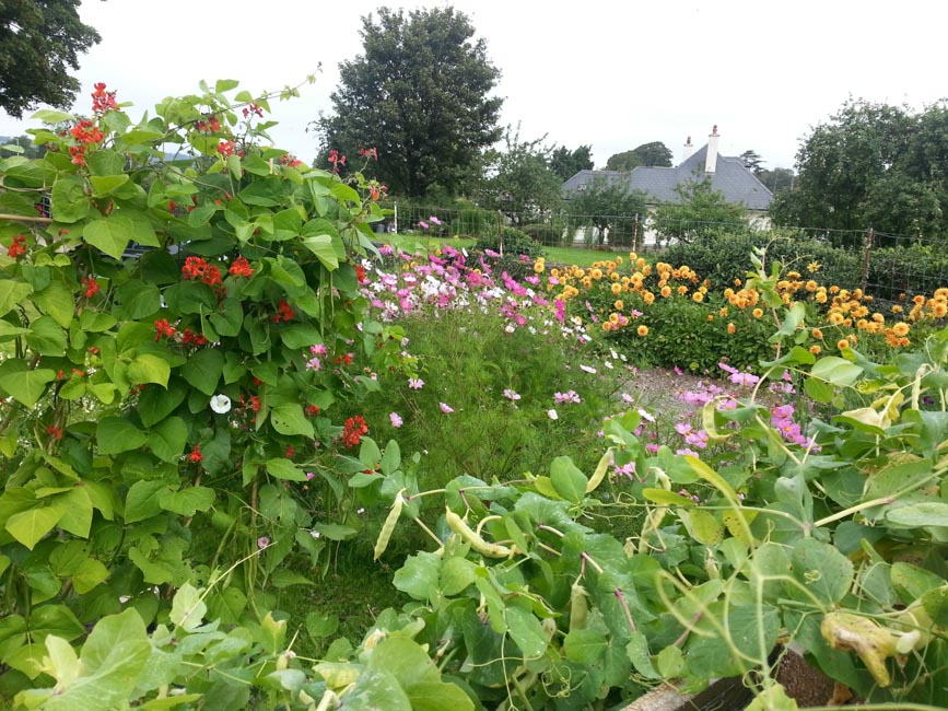Leighlinbridge Community Garden