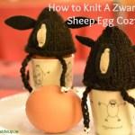 How to knit a Zwartbles Egg Cozy