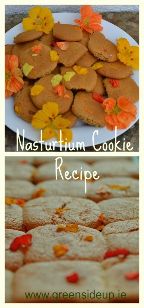 Nasturtium Cookie Recipe
