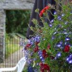 Newtownbarry Garden
