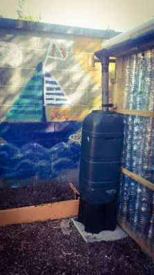 The finishing touches in the plastic bottle greenhouse
