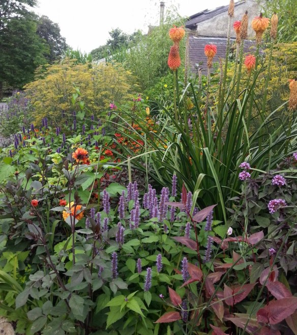 One of the flower borders at Lavistown House, home to the Mid-Kilkenny Beekeepers Aviary