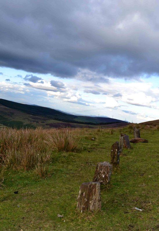 The Nine Stones, Co Carlow