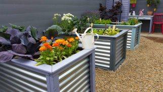 Garden Festivals Bloom in Ireland