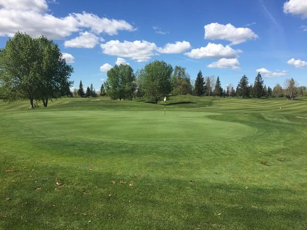 Wildhawk Golf Club Sacramento California Hole 8 Par 4 Green-side