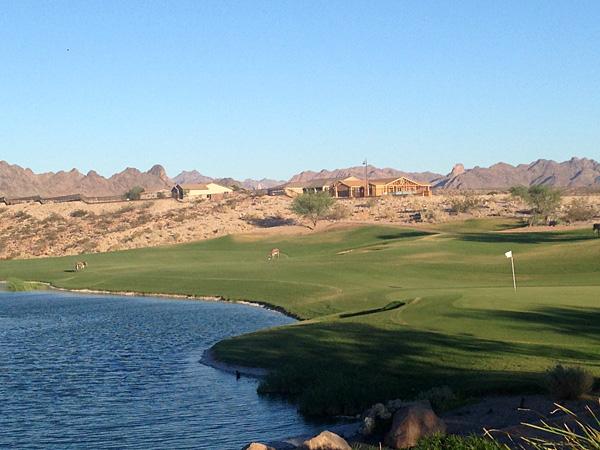 Laughlin Ranch Golf Club Bullhead City Arizona Hole 18 - Burros!
