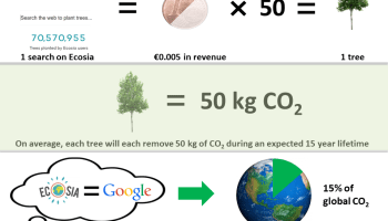 Overview of the numbers behind tree planting operations by the green search engine, Ecosia.