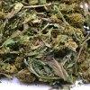 Certified organic CBD hemp biomass
