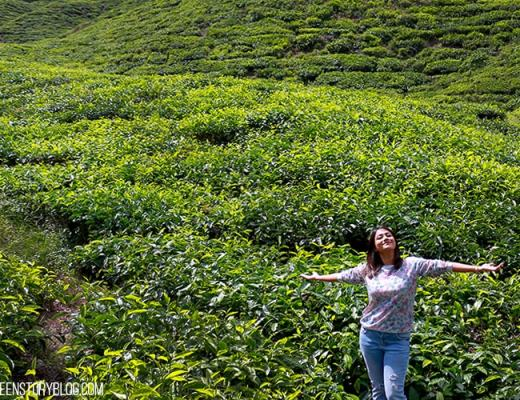 Bangladeshi beauty blog Green Story, Cameron Highland Trip