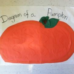 Parts Of A Pumpkin Diagram Leagoo Lead 6 Battery Green Tea And Slp Speech Language With Smidge