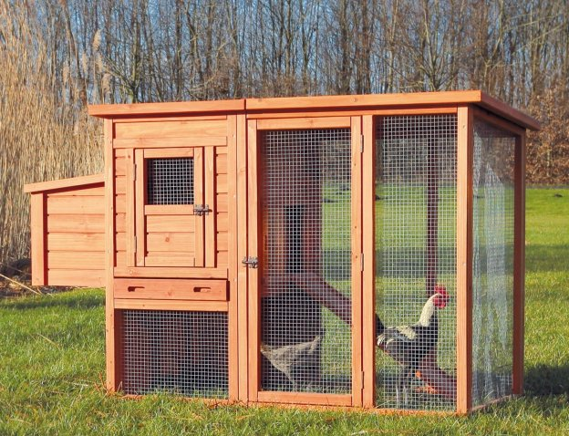 Urban Chicken Coop with Outdoor Runing