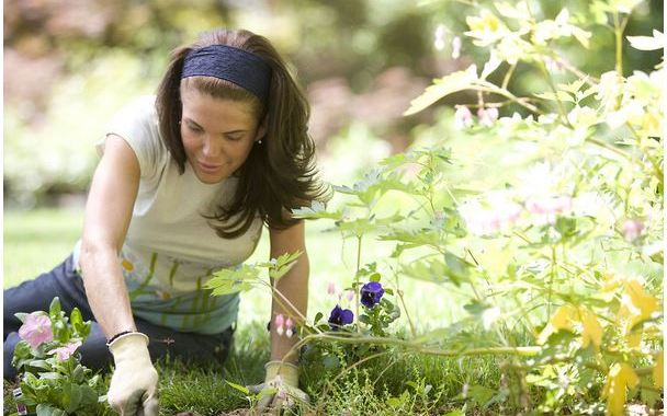gardening-tips-9-11