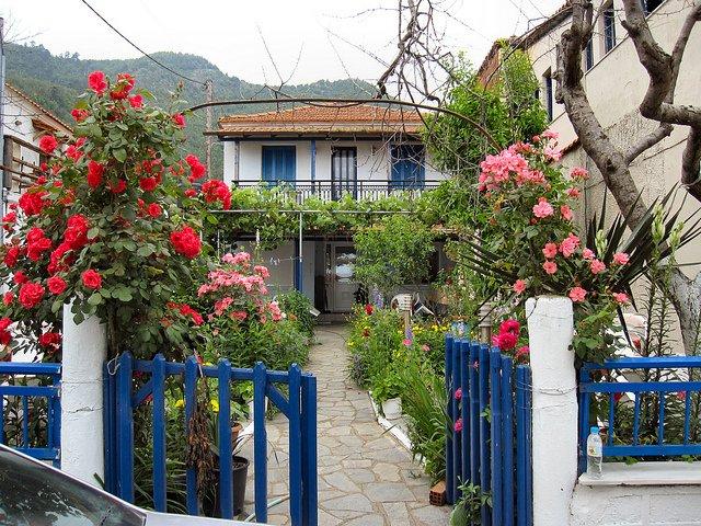 Flower garden for different seasons