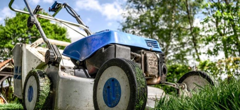 lawn care options