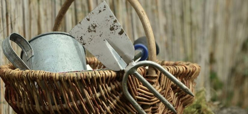 Gardening tools for beginners