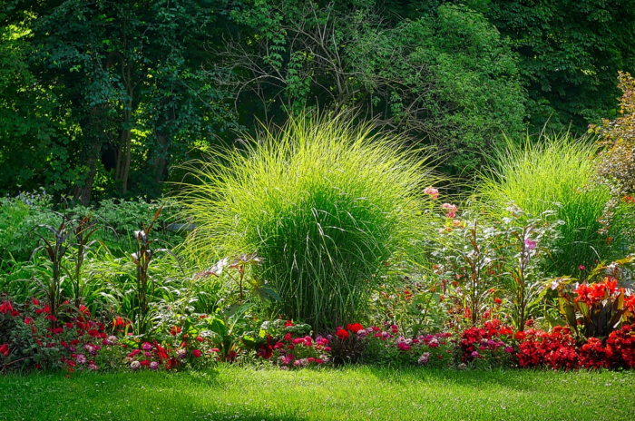 Best Ways To Pincher-Proof Your Backyard