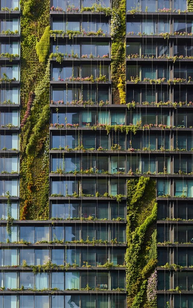 A fachada verde do One Central Park mescla espécies plantadas em jardins verticais e trepadeiras guiadas por fios de aço. (Fonte: Archdaily).